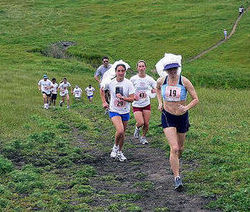 Brides running up hill